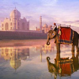 Индия 1