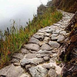 Дорога инков